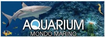 Aquarium Mondo Marino di Massa Marittima