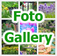 FotoGallery Casa Fibbianello MaremmaOnline
